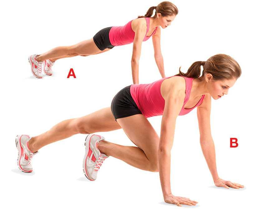 Упражнение скалолаз на какие группы мышц в домашних условиях быстро