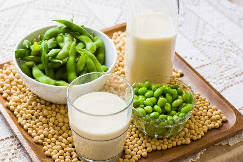 Соевый протеин: плюсы и минусы. изолят соевого белка: польза и вред