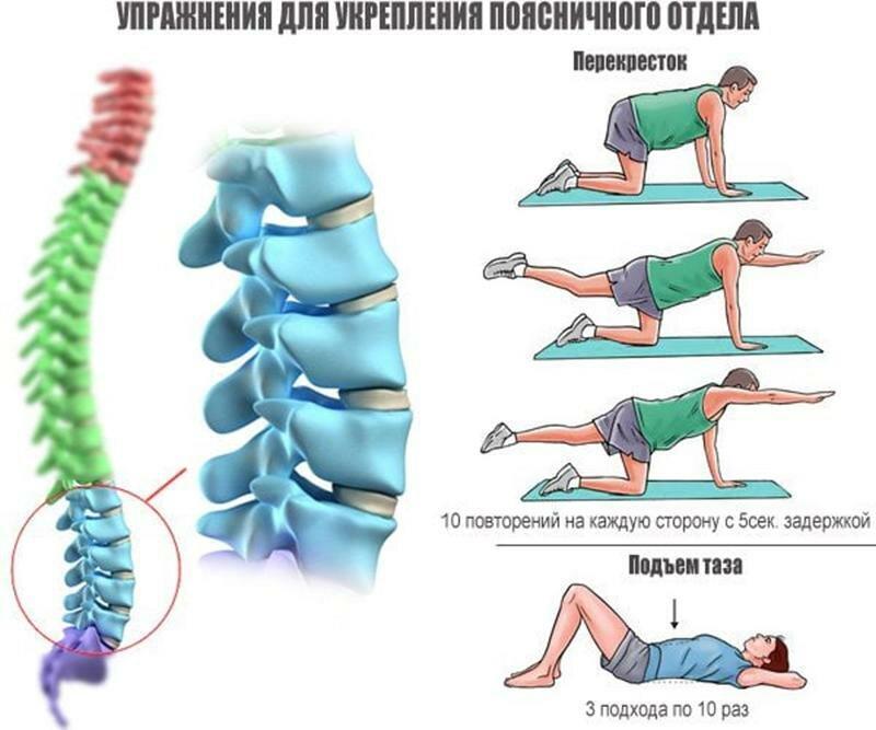 Как расслаблять мышцы спины (снимать спазмирование)