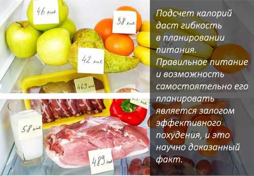 Бжу для похудения: суточная норма :: syl.ru