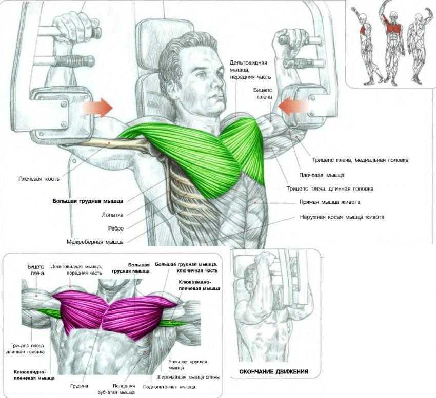 Отжимания на брусьях – супер упражнение для рук и груди