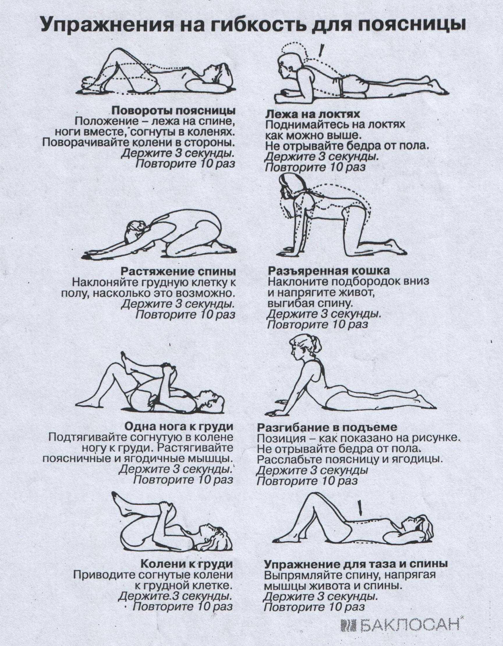 Комплекс гимнастики для шеи - 10 самых полезных упражнений