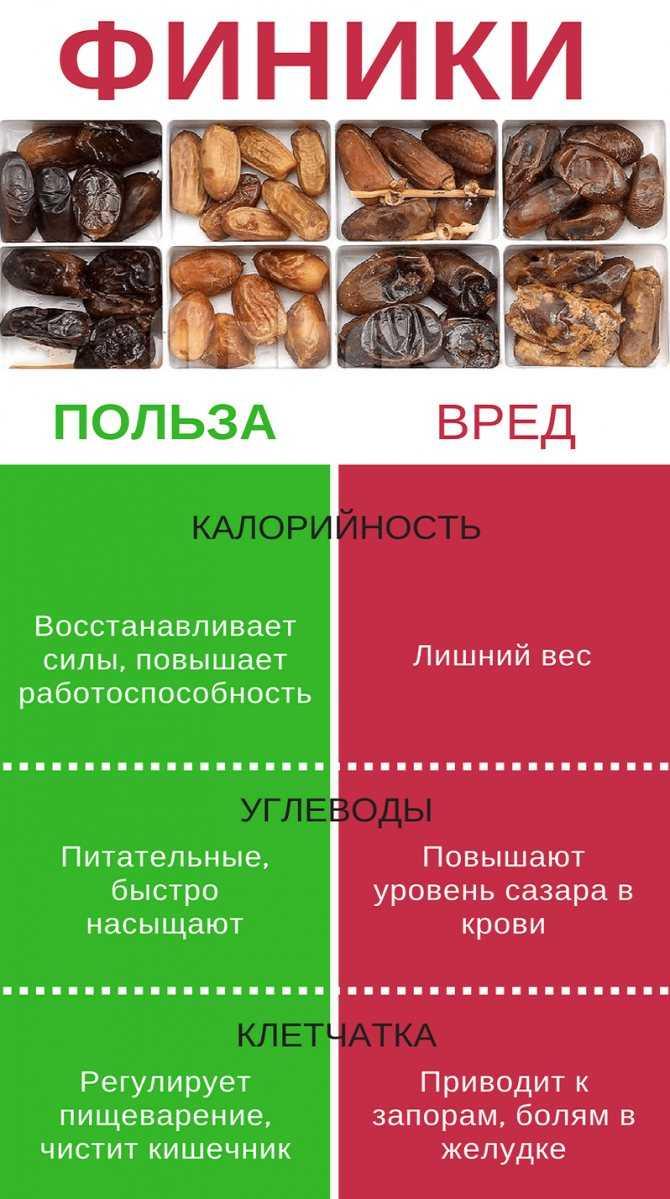Сухофрукты: польза и вред, сухофрукты на похудение и на пп, как выбрать, подробный обзор видов, 5 пп-рецептов, какой вид самый полезный, как изготавливаются