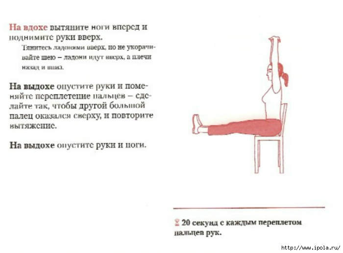 Фитнес зарядка в офисе упражнения для пресса ягодиц ног