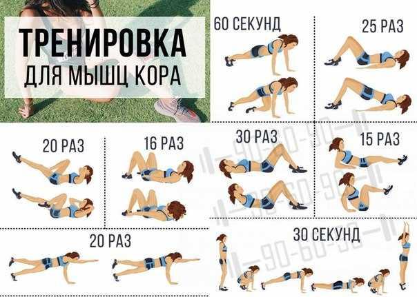 Круговая тренировка: картинки, комплекс эффективных упражнений, техника выполнения, отзывы - tony.ru
