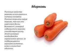 Морковь для потенции и других недугов мужчин: польза для организма, какой вред здоровью может нанести, как употреблять и чем хорош сок овоща?