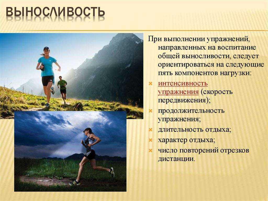 """Круговая тренировка """"развитие силовой выносливости"""""""