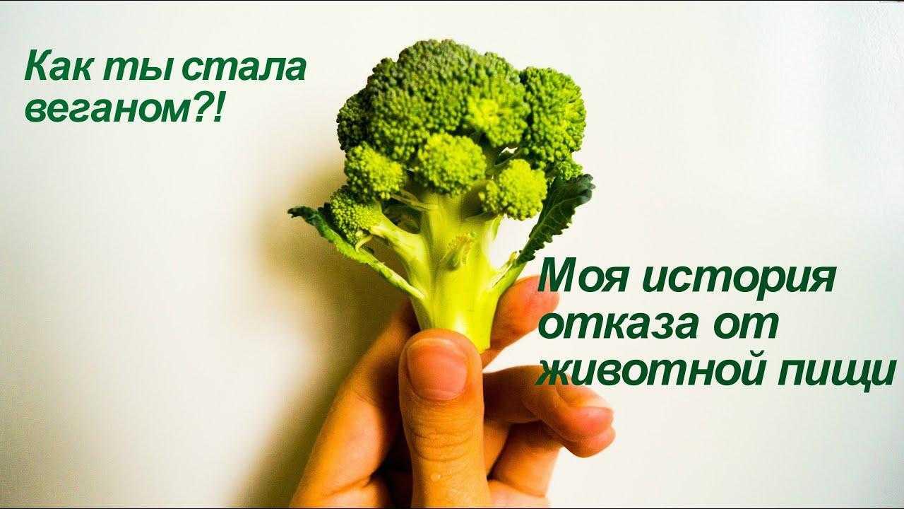 Как стать вегетарианцем и не навредить своему организму