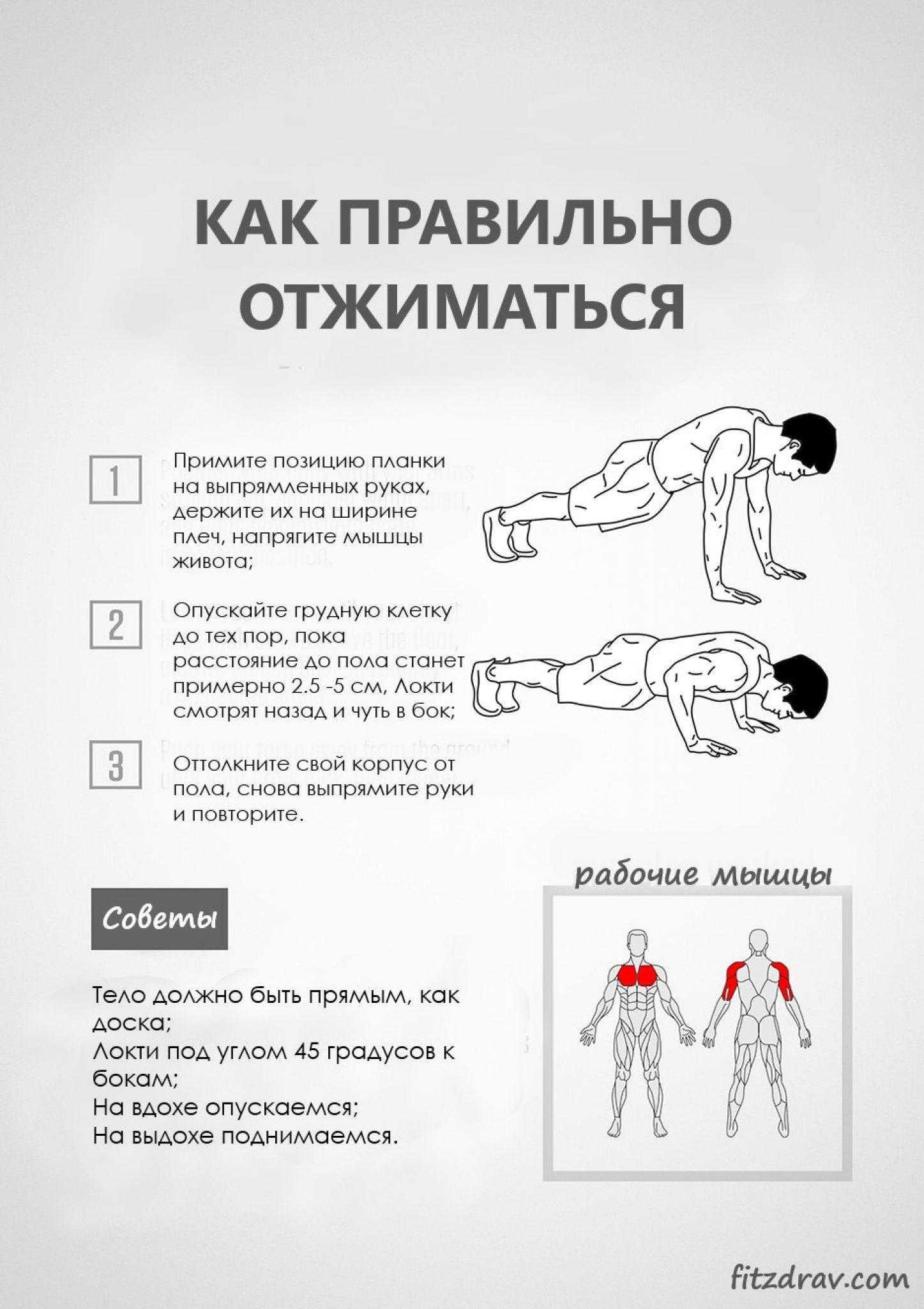 Алмазные отжимания: техника выполнения, какие мышцы работают
