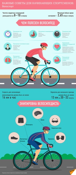 Польза и вред велосипеда, какие мышцы работают, как выбрать