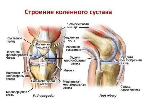 Каковы причины хруста в коленях при приседании