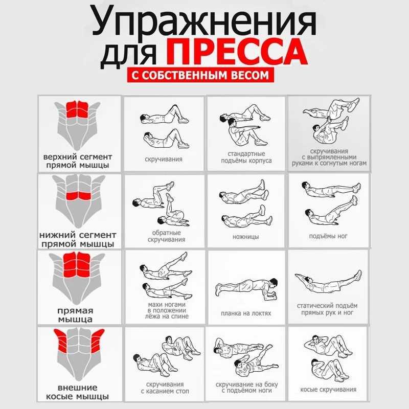 Лучшие упражнения на пресс в домашних условиях   универсальный комплекс для мужчин и женщин