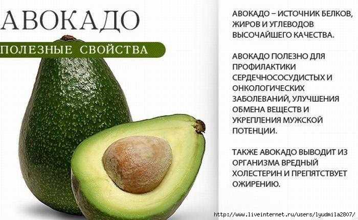 Авокадо: полезные свойства и применение в косметике
