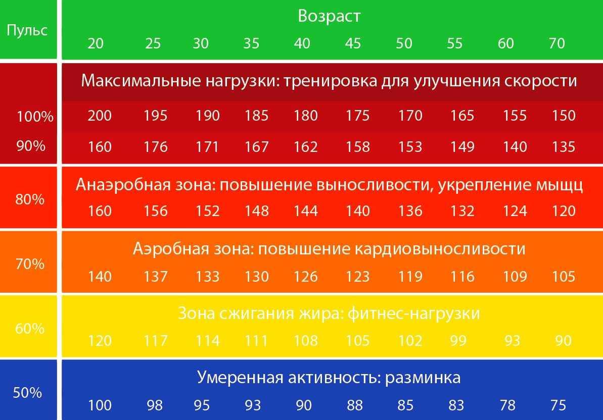 Пульс во время тренировки: как рассчитать максимально допустимый по формуле от нормального, каким должен быть после