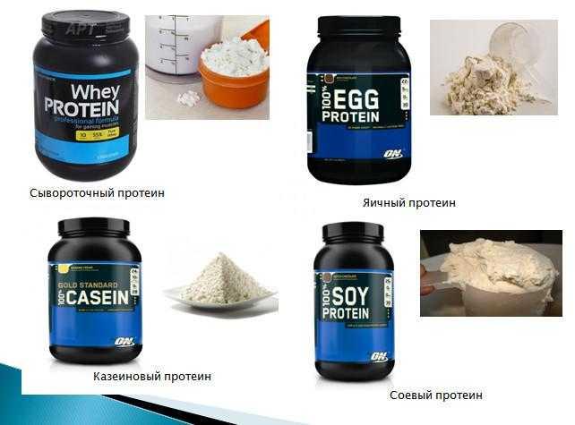 Из чего делают протеин и как производят протеиновые добавки для спортсменов.