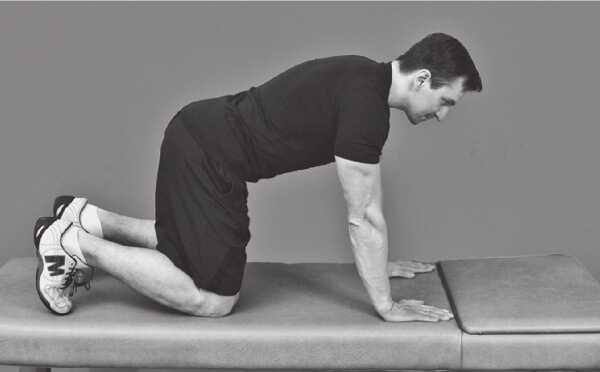 Готовая тренировка для похудения живота и рук (гифки)