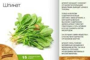Какой на вкус шпинат? польза шпината, состав витаминов и микроэлементов