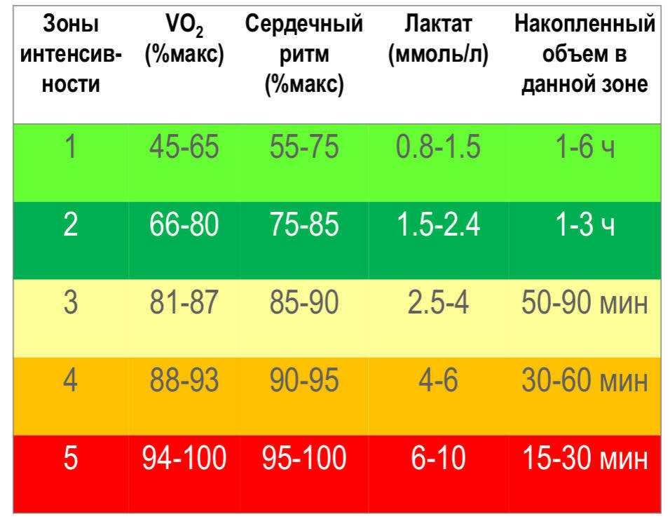 Оптимальный пульс для сжигания жира - калькулятор расчета