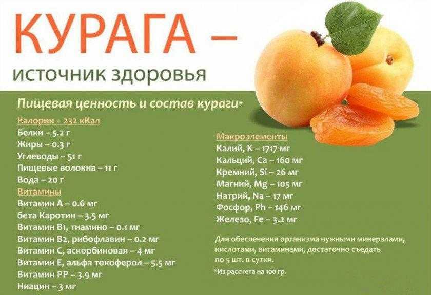В чем польза и вред моркови для мужчин? помогает ли для улучшения потенции и при недугах?