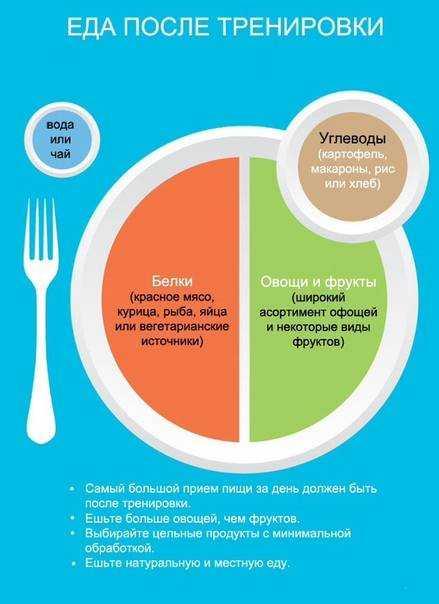 Лучшие советы и рекомендации по питанию до и после тренировки Что, когда и сколько можно съесть после занятий, чтобы похудеть и сделать тело стройным