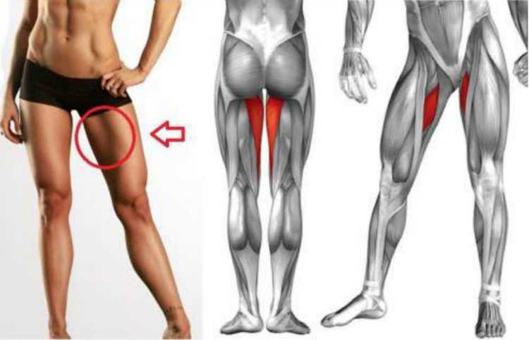 Почему болят колени после тренировки?