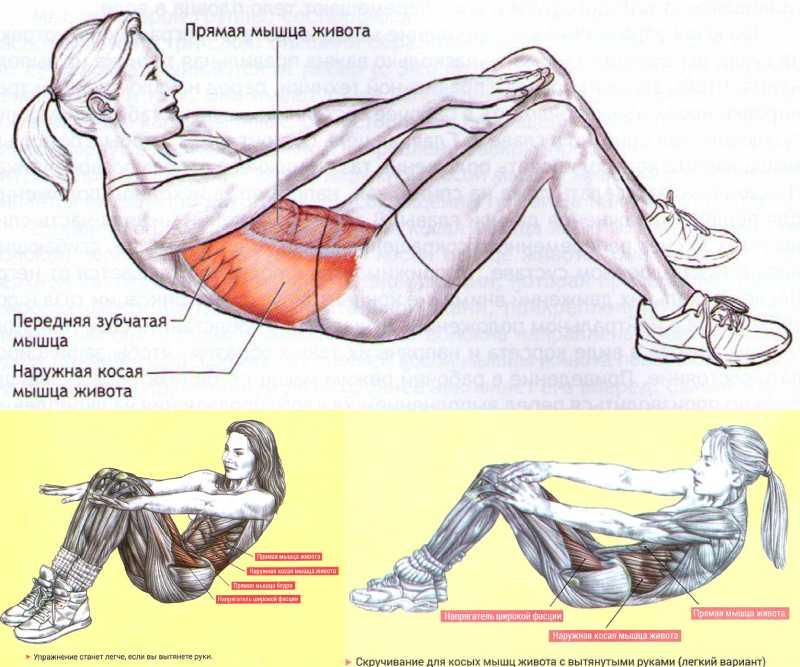 10 упражнений на нижнюю часть пресса для продвинутых