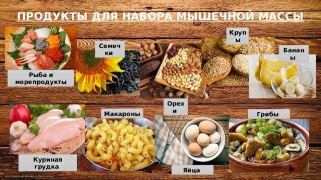 Программа питания (диета) для набора мышечной массы