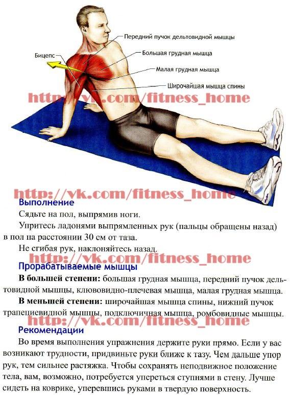Растяжка после тренировки: комплекс упражнений - tony.ru