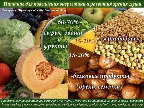 10 продуктов для энергии и бодрости: какое питание дает силы организму, а какое отнимает, а также обзор народных средств и диет для повышения работоспособности