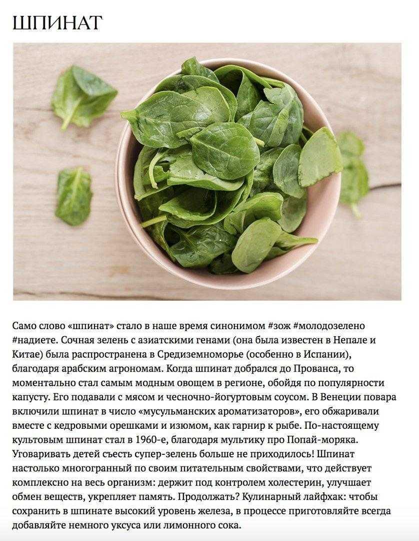 Полезные свойства шпината для организма - применение в кулинарии, народной медицине и косметологии