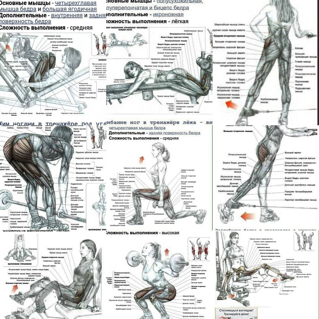 Экстремальная тренировка ног с акцентом на квадрицепсы. • bodybuilding & fitness