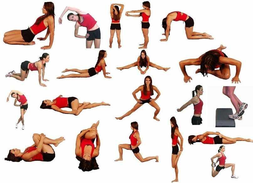 Растяжка мышц - советы и правила от профессионала |
