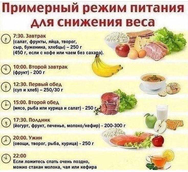 Белковая диета - меню на 14 дней и результаты похудения