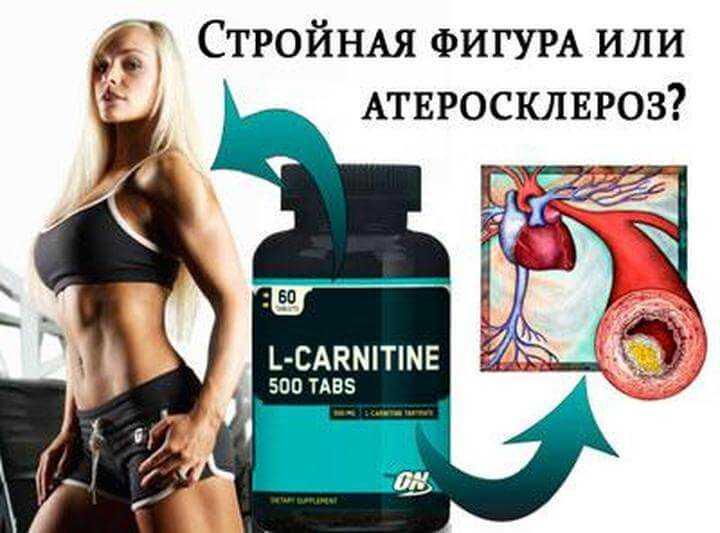 Для чего нужен л-карнитин, инструкция по применению, побочные действия