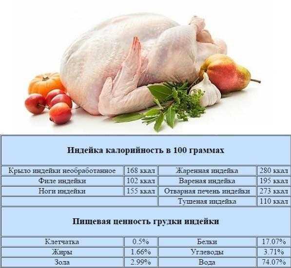 Топ-20 вкусных и полезных пп-рецептов из куриной грудки