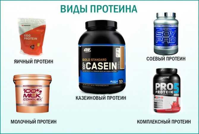 Протеин: противопоказания, побочные эффекты, состав, инструкция по применению, показания - tony.ru