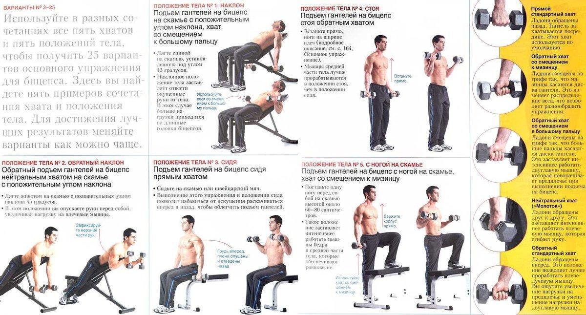 Методика развития гибкости