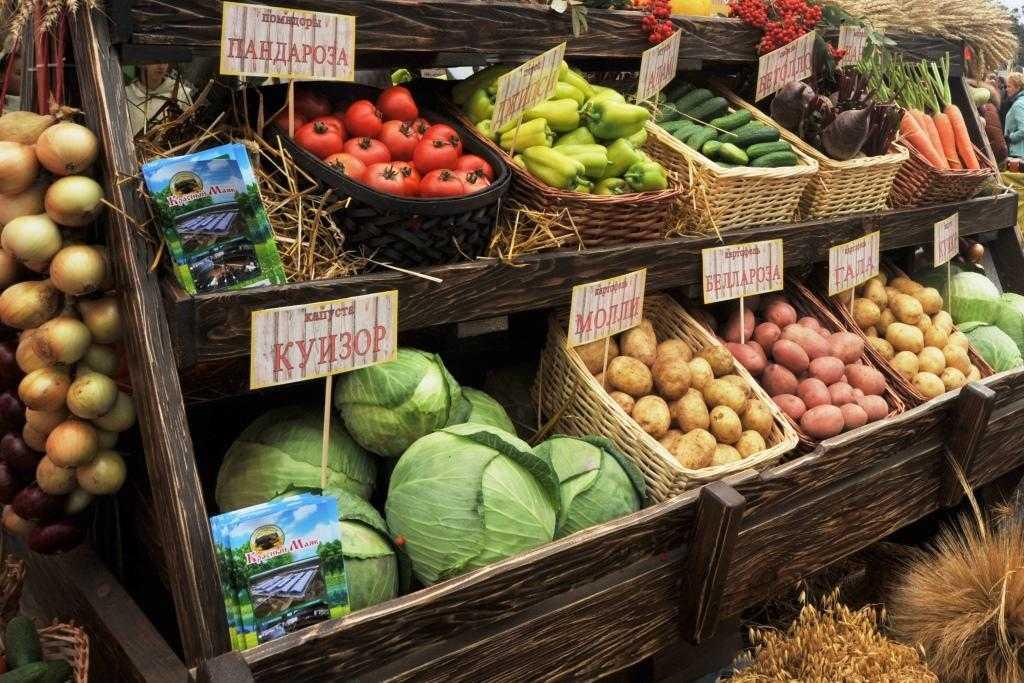 Как открыть пищевое производство: 20 самых бюджетных идей - бизнес-журнал b-mag