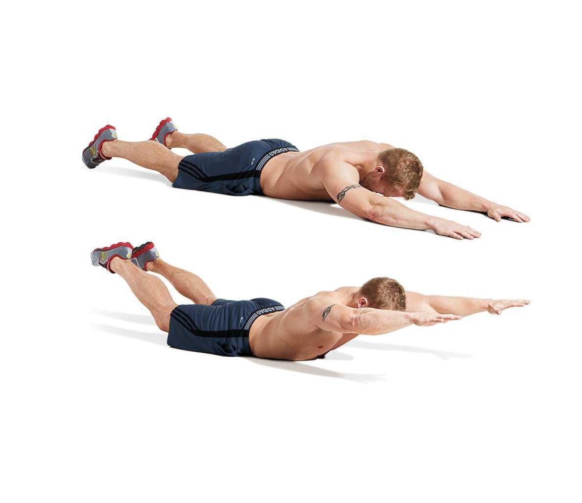 Упражнение лодочка: для, спины, пресса, польза, как делать, на животе, мышцы