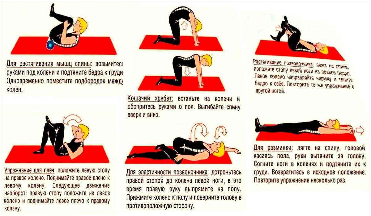 Гимнастика для грудного отдела позвоночника при остеохондрозе: цель применения, эффективные упражнения