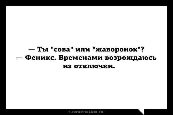 Биологические часы организма человека :: syl.ru