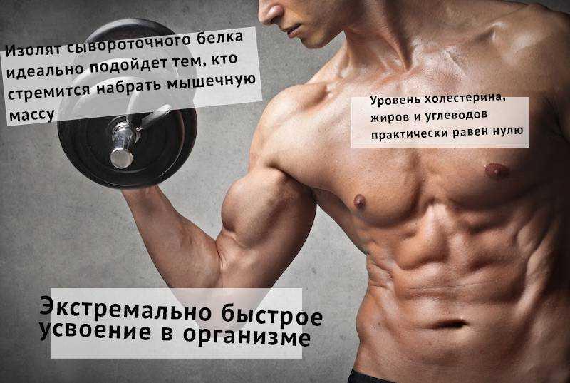 Правильное питание для набора мышечной массы: 7 рекомендаций от экспертов   promusculus.ru
