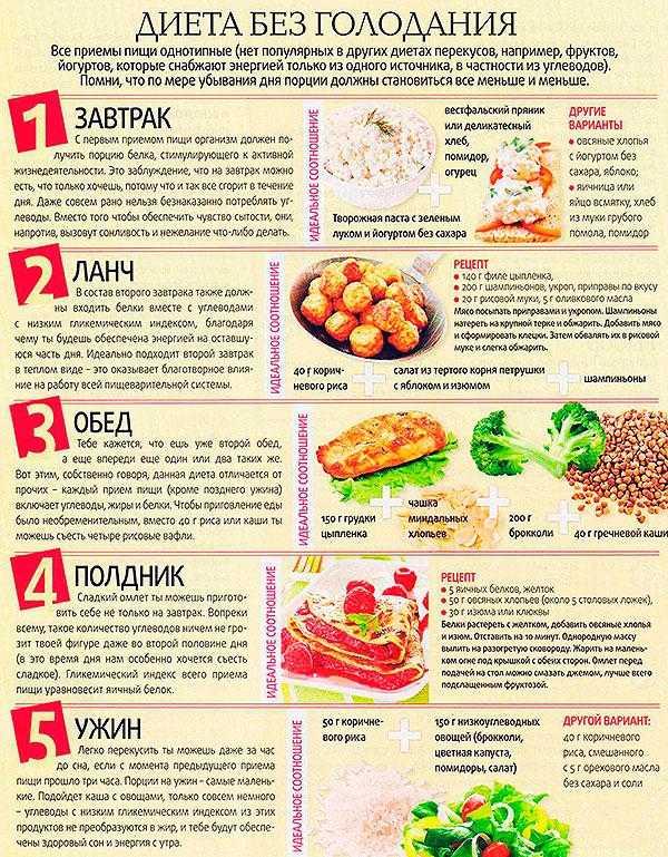 Польза и вред капусты брокколи: полезные свойства, противопоказания, как приготовить вкусно и полезно, для похудения и в лечебных целях