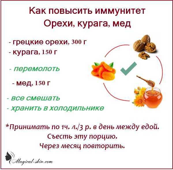 Укрепление иммунитета народными средствами - рецепты для быстрого восстановления и поднятия иммунитета