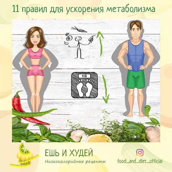 Как можно ускорить метаболизм для похудения в домашних условиях