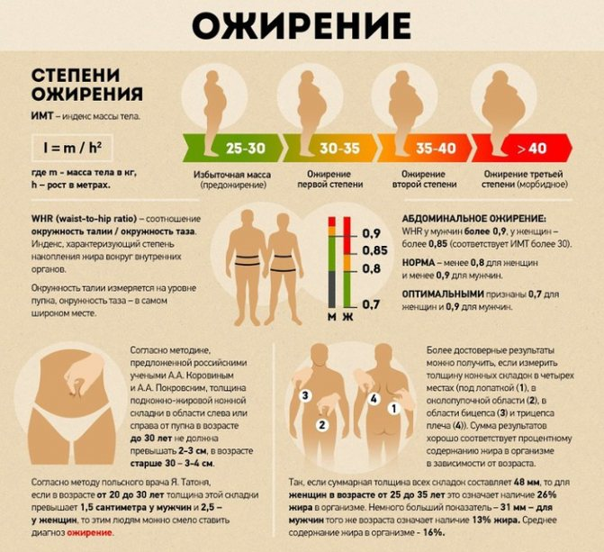Каковы последствия ожирения: к чему приводит лишний вес