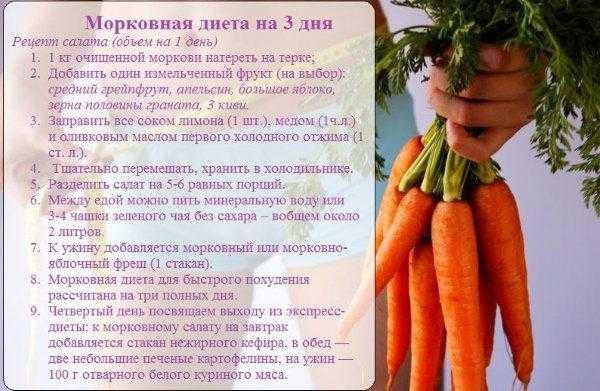 Морковь: польза и вред для организма | пища это лекарство