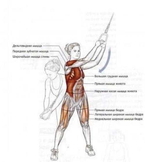 Как правильно выполнять упражнение «дровосек»?