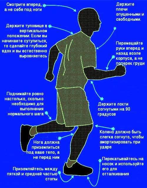 Как правильно бегать: советы экспертов