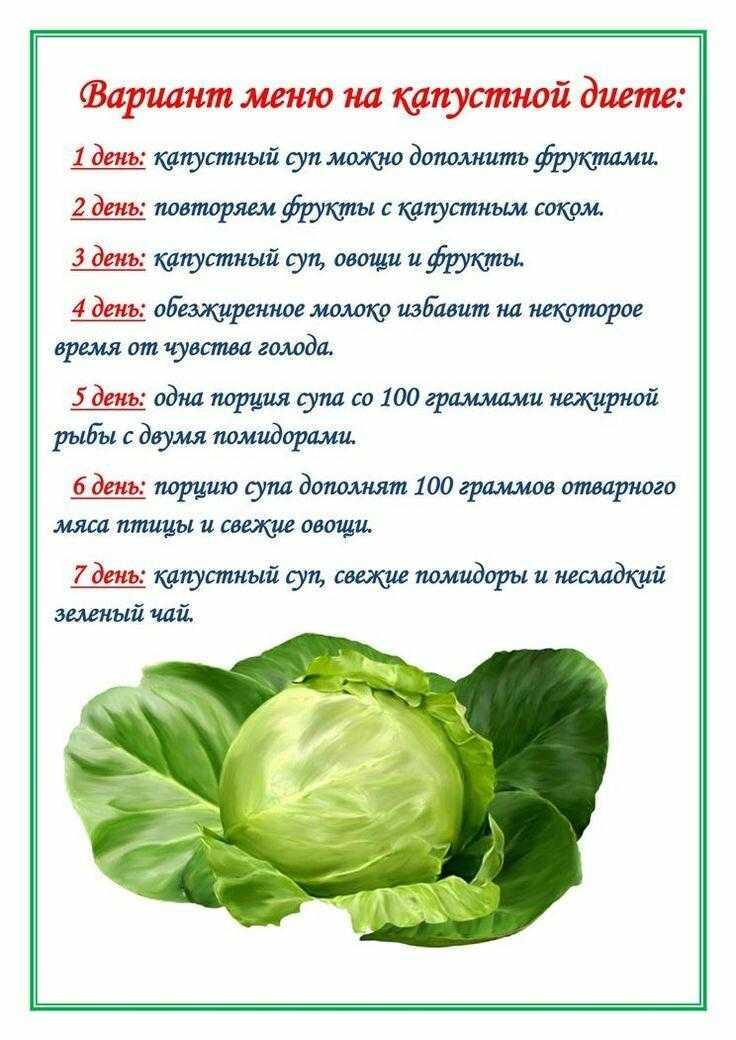 Брокколи - польза и вред, состав и рецепты приготовления блюд с фото